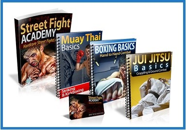 street fighting books